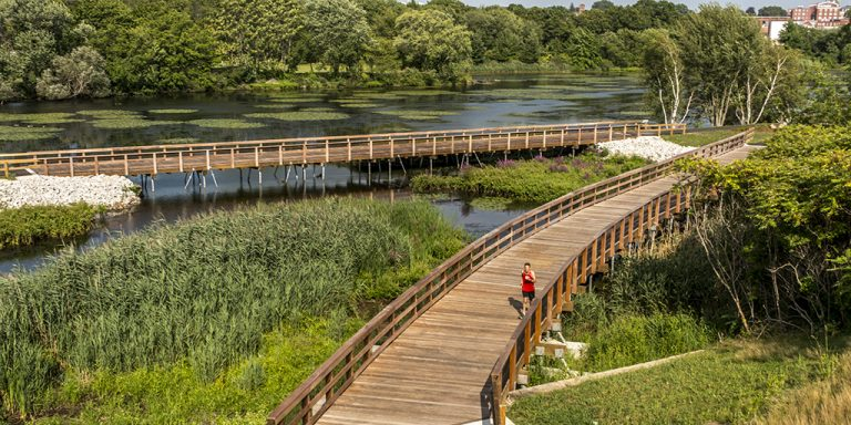 The Quequechan River Rail-Trail Project is a beautiful example of wetland boardwalk construction